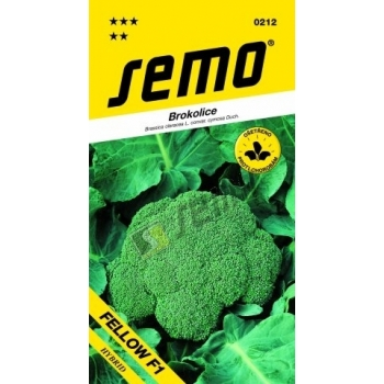 Brokolice FELLOW F1