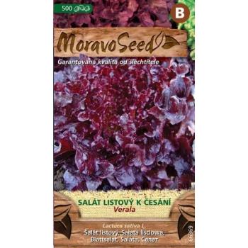Salát listový VERALA - NOVINKA