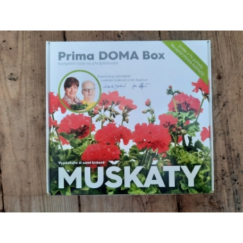 Prima DOMA Box - MUŠKÁTY - červené